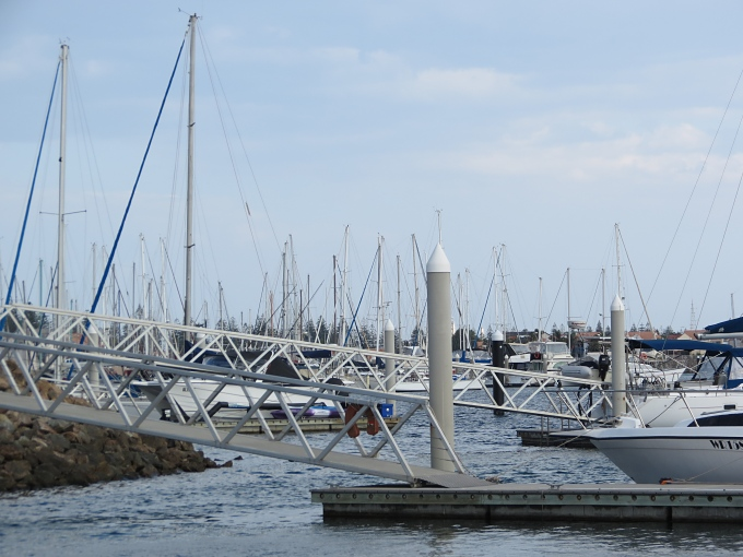 adelaide sea of masts