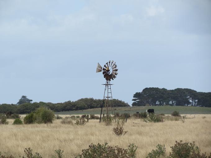 king island pastureland
