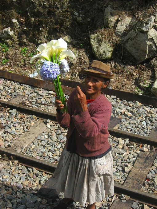 Selling lillies on the train route