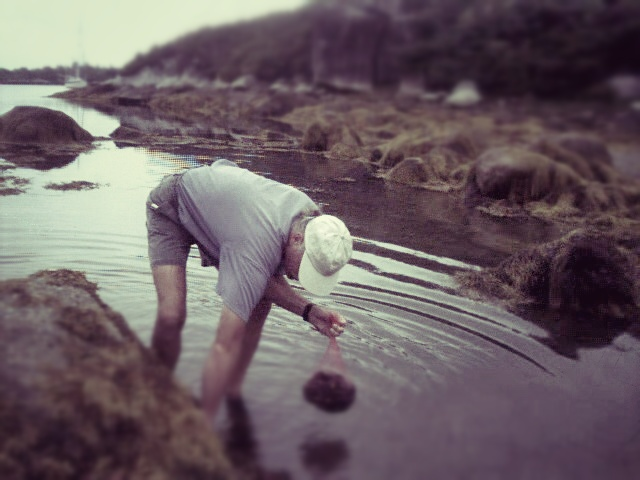 David gathering mussels