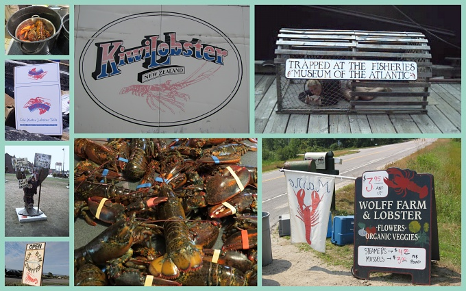 lobster collage