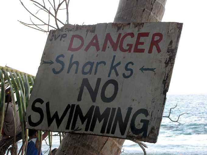 danger sharks no swimming