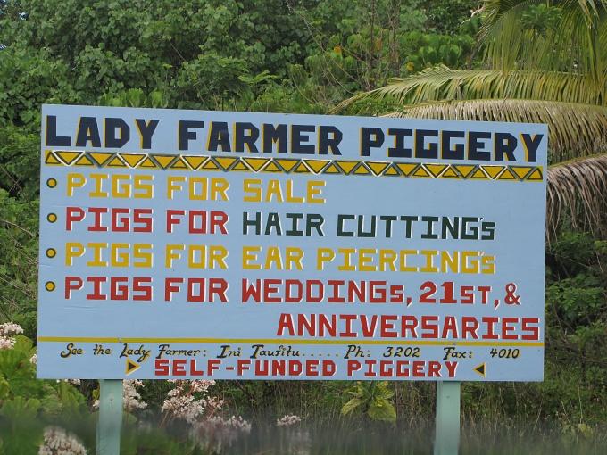 lady farmer piggery