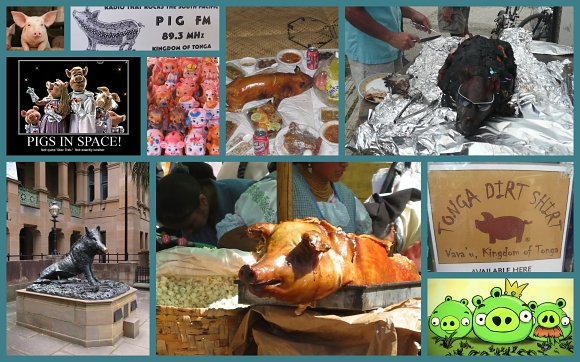 pig collage