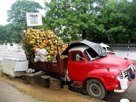 coconut truck