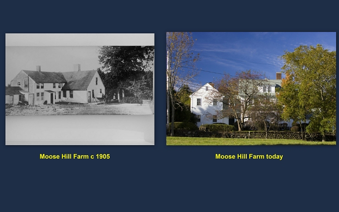 moose hill farm
