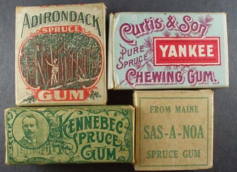 spruce gum