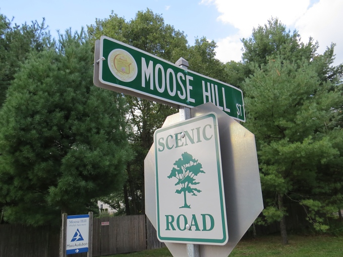 moose hill scenic road