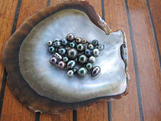 black pearls in gambier