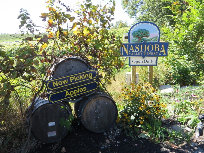 nashoba orchard and winery