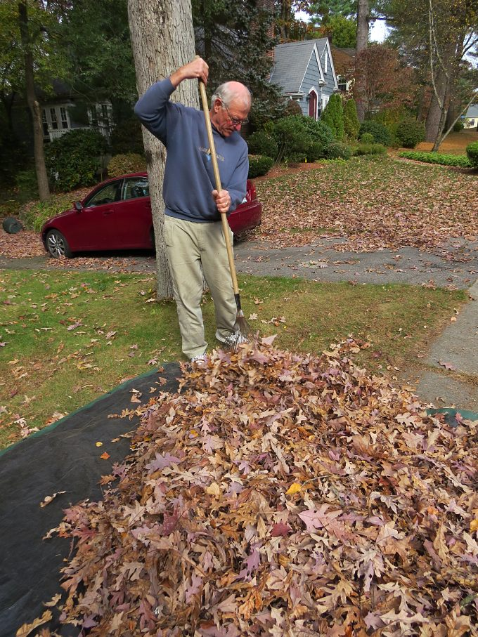 david raking leaves