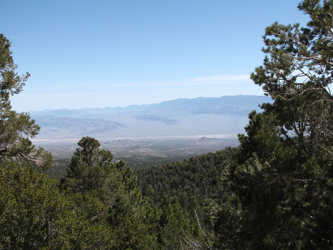 view from mt charleston