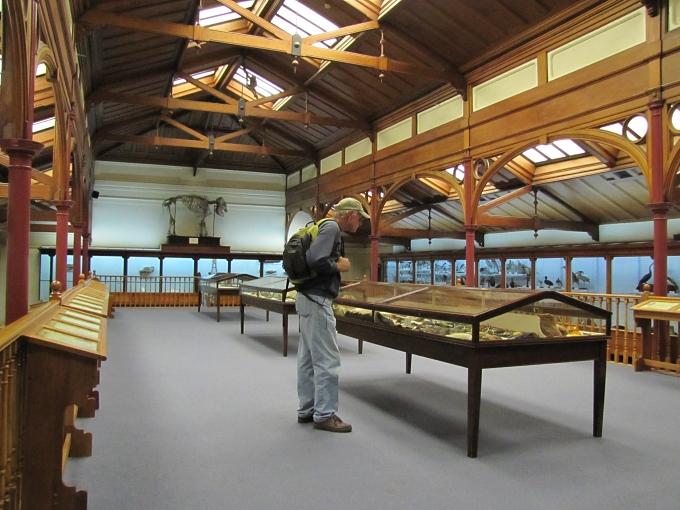 otago museum attic