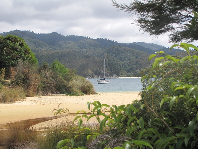 nine of cups anchored at abel tasman