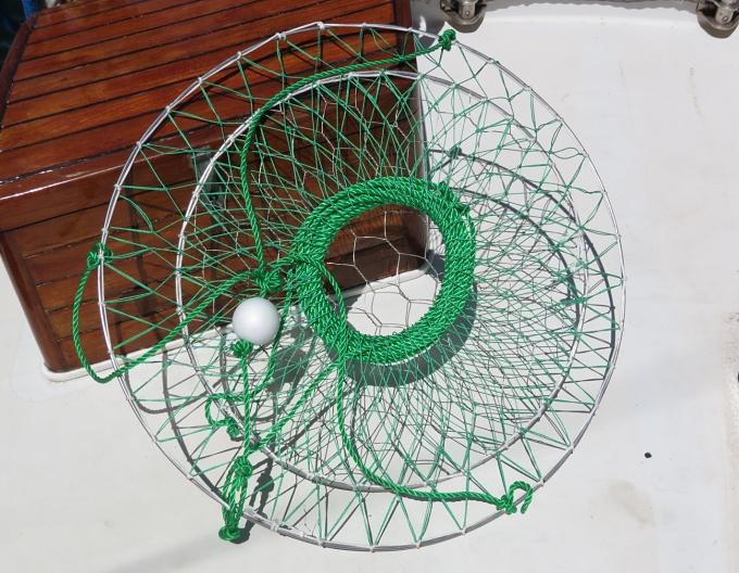 crab net