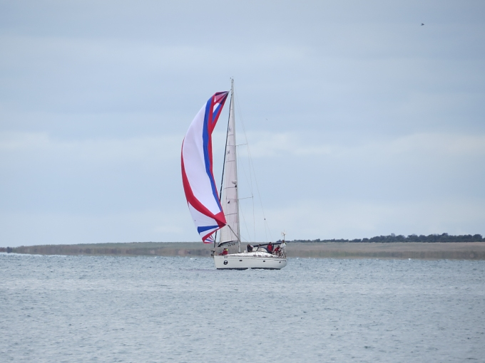 adelaide to lincoln yacht race boat