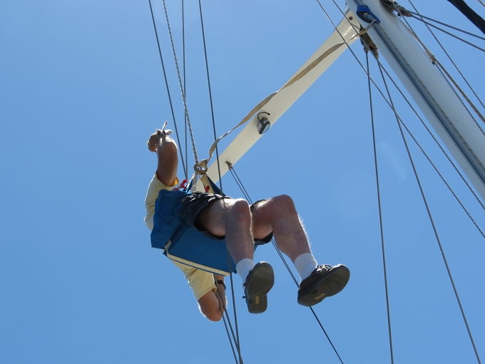 david up the mast for a rigging check