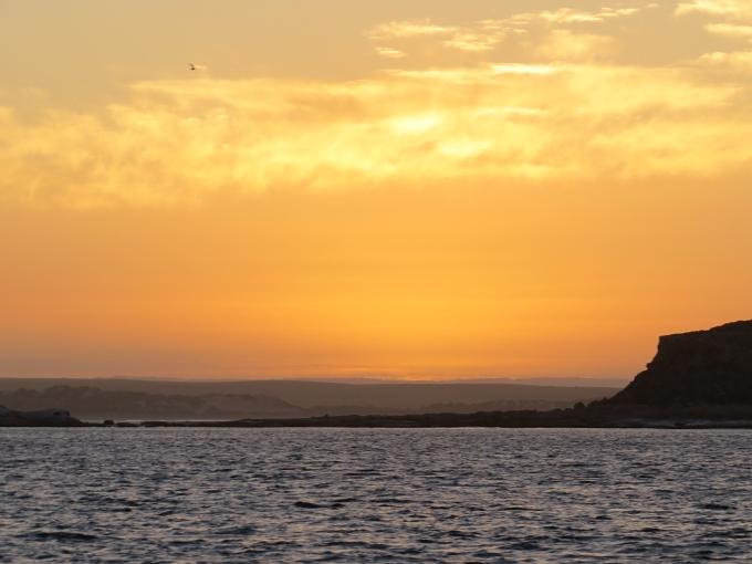 waldegrave sunrise