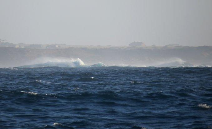 coast surge
