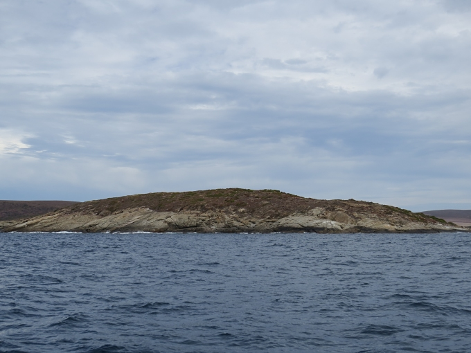 cheyne island