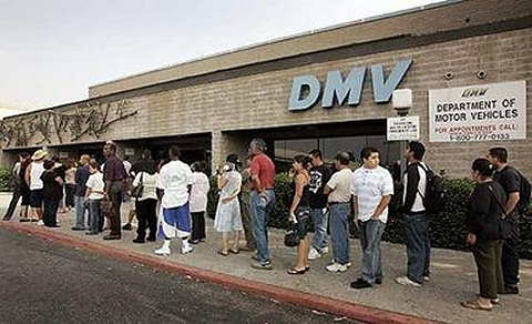 long line at the dmv