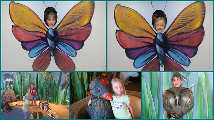 nature center collage