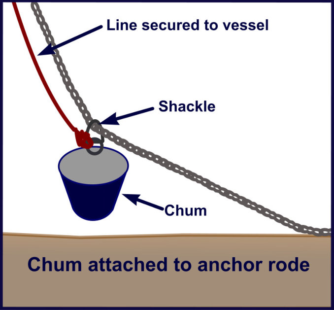 chum shackled to chain