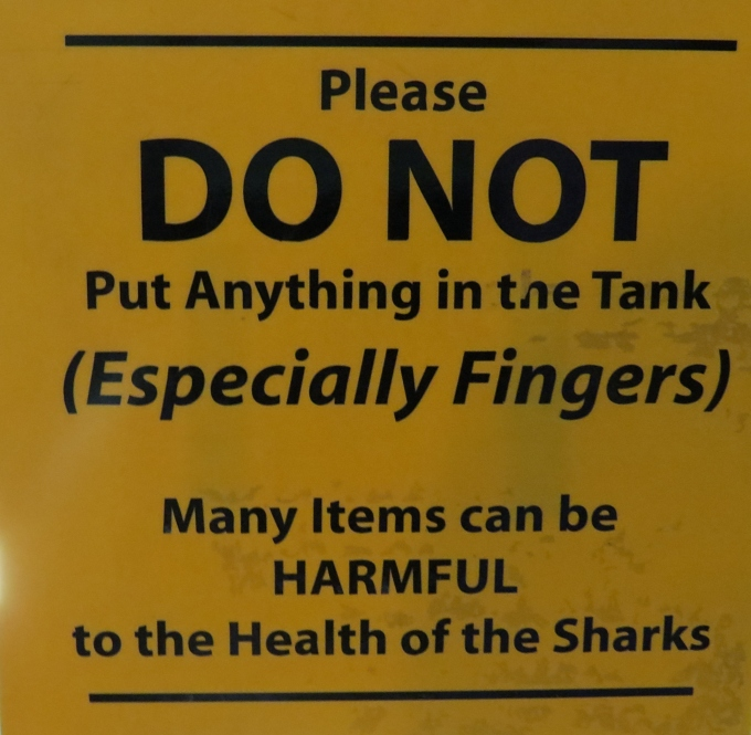harmful to sharks