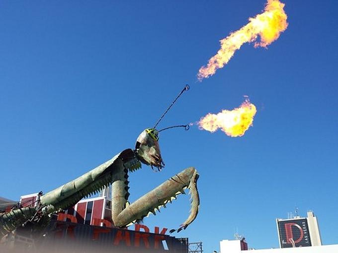 mantis flames