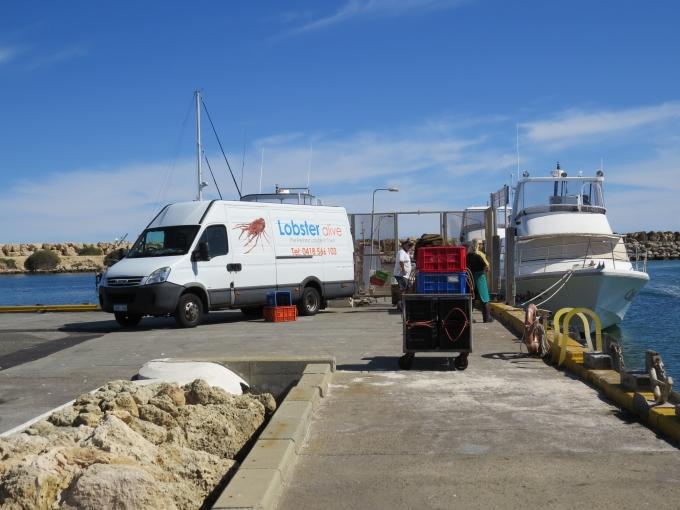 lobster boats unloading
