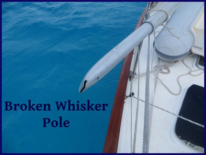 broken whisker pole