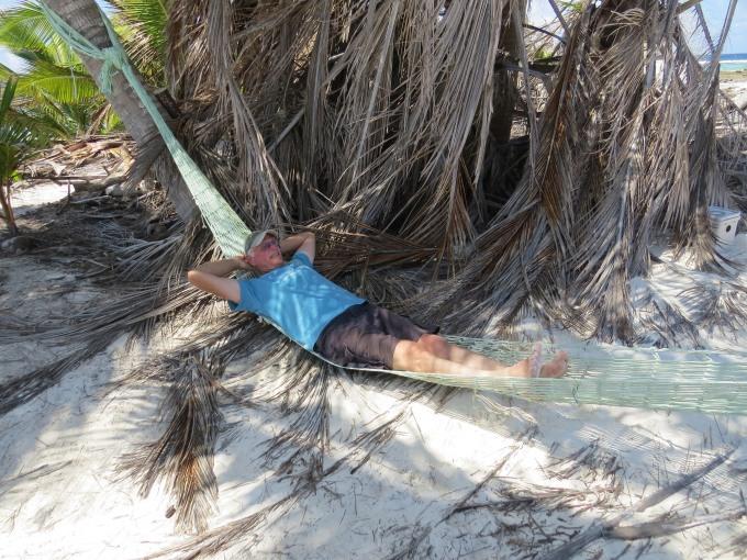 david in hammock
