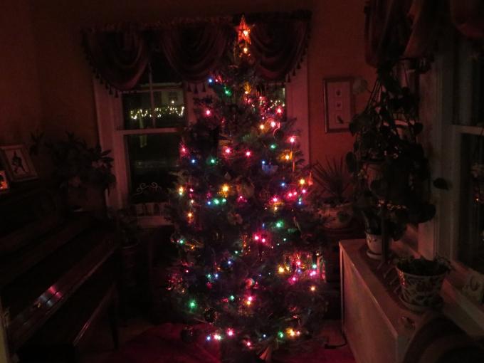 dcorated tree boston