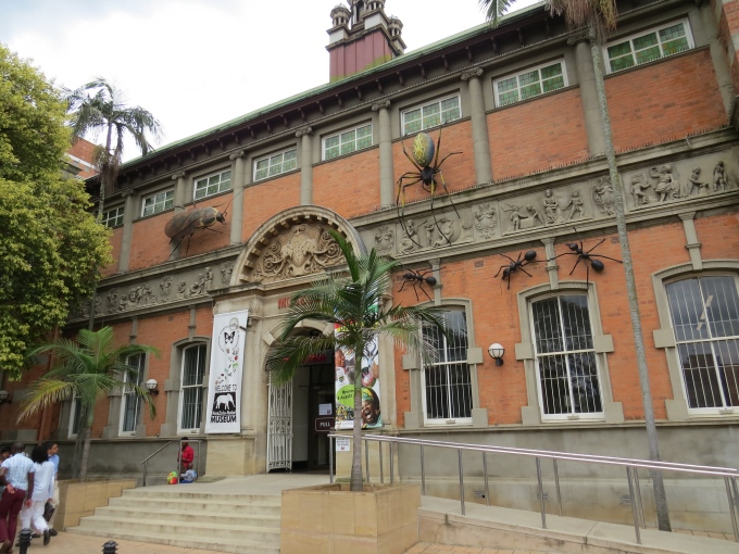 natal museum south africa