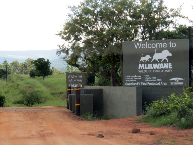 welcome to mlilwane in swaziland