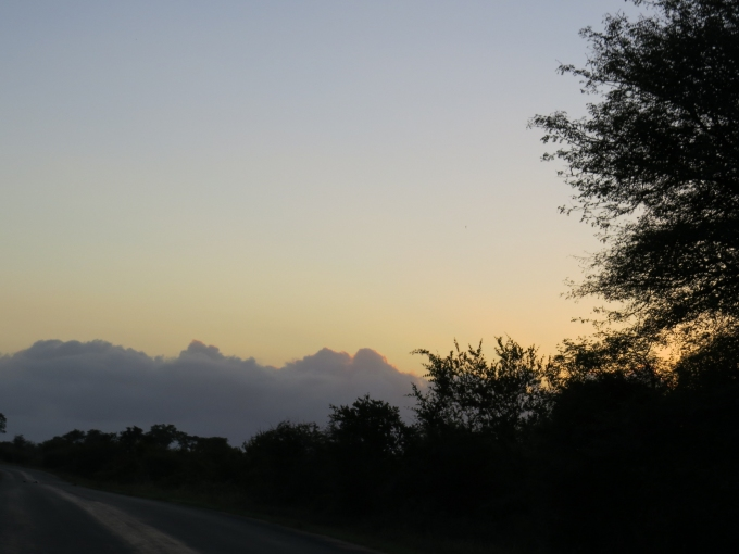 dawn at kruger np