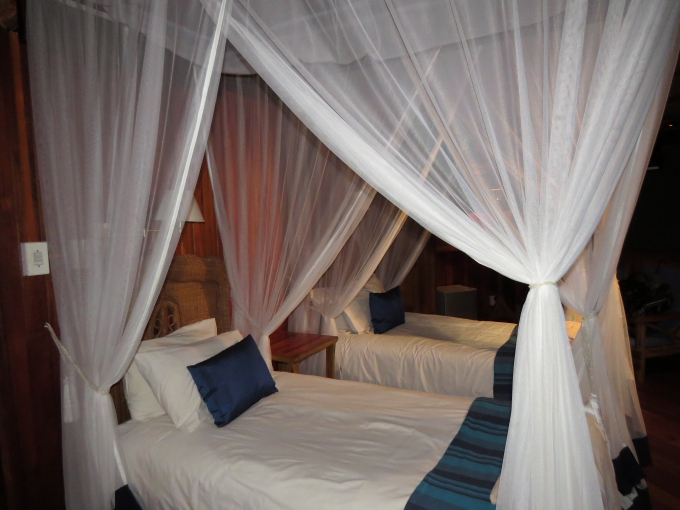 mosquito net beds at shayamoya lodge