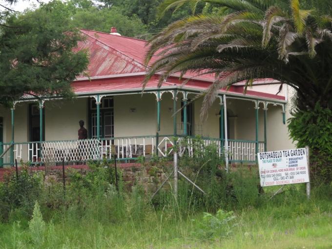 overgrown tea garden ndebele museum
