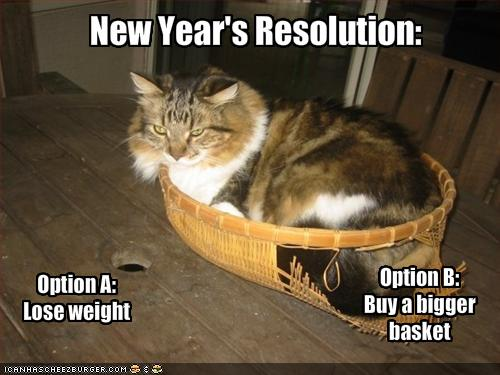 nyresolutions2015-cat-ponders-his-new-years-resolutions11