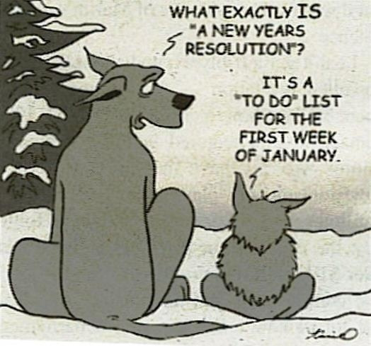 nyresolutions2015-marmaduke cartoon