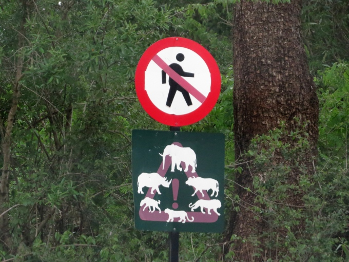 beware of the big five at the mkhuze wildlife sanctuary