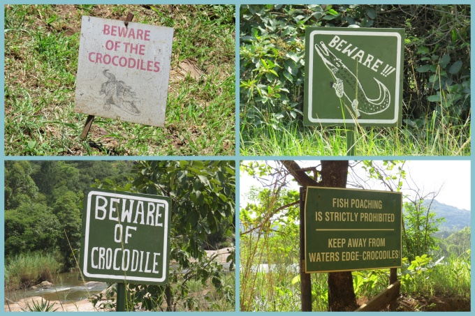 beware crocs at nearly every river in swaziland and south africa