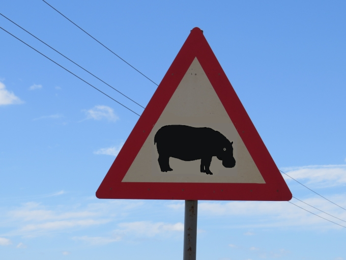 hippo crossing r40 highway
