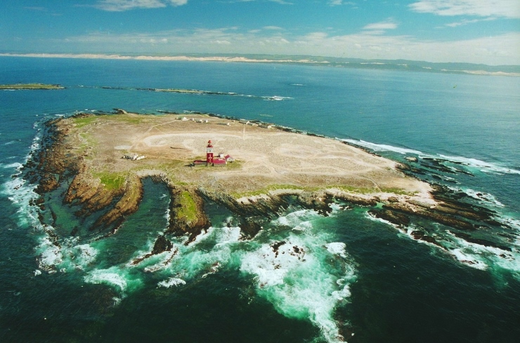 bird island aerial view