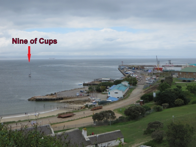cups harbor view mosselbaai