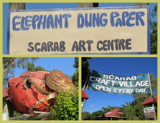scarab art centre south africa