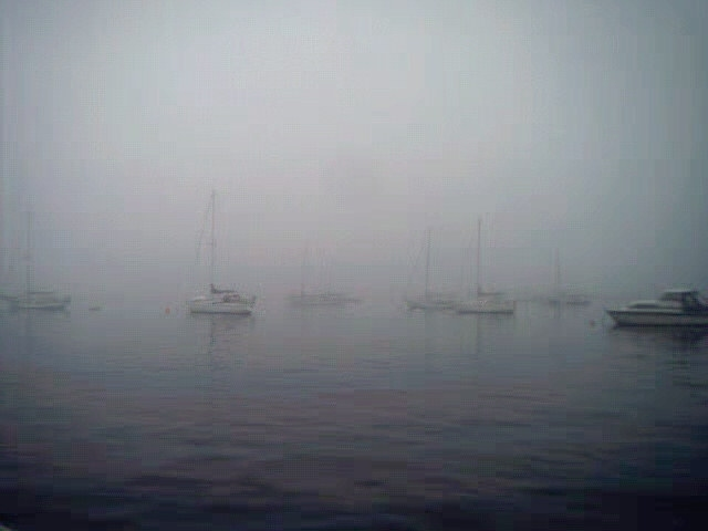 camden maine fog