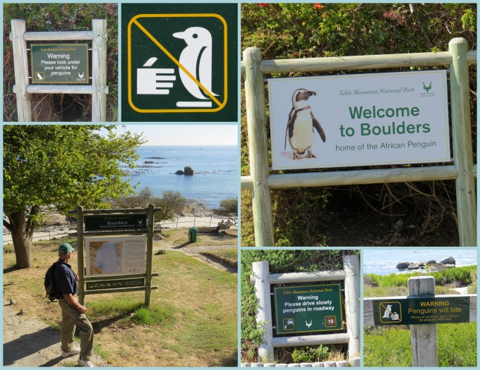 warning signs boulders beach south africa
