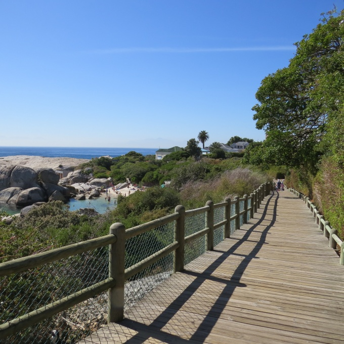 fenced board walk at boulders beach south africa