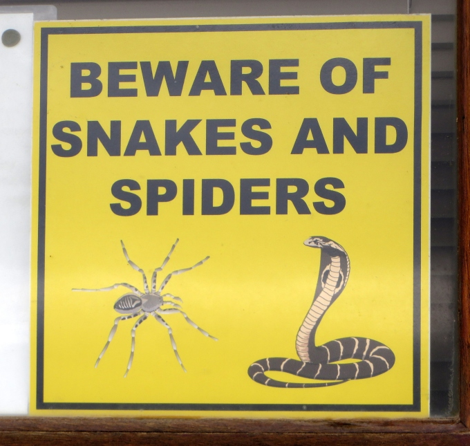beware snakes and spiders